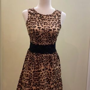 Dresses & Skirts - Leopard print stretchy zip up lace detail dress